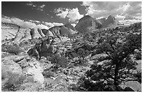 Plateau and domes above Capitol Gorge. Capitol Reef National Park, Utah, USA. (black and white)