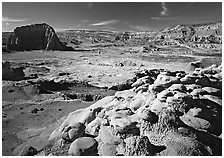 Lower South Desert. Capitol Reef National Park, Utah, USA. (black and white)