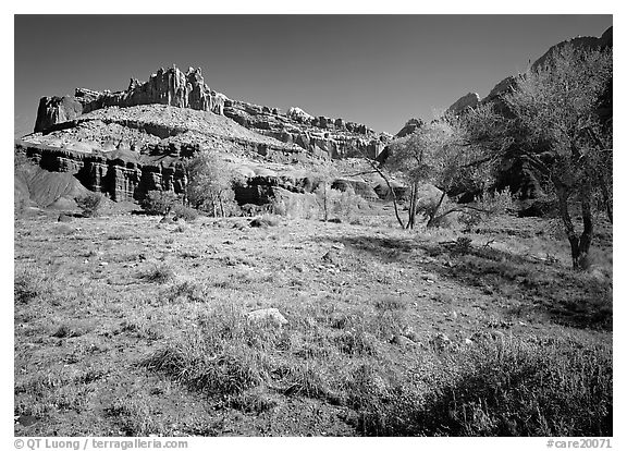 The Castle, morning spring. Capitol Reef National Park (black and white)