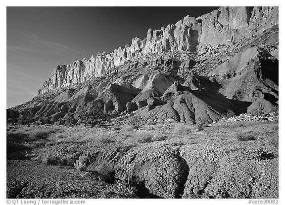 Wildflowers and Waterpocket fold, afternoon. Capitol Reef National Park (black and white)