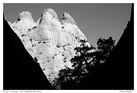 Sandstone towers seen from Surprise Canyon. Capitol Reef National Park (black and white)