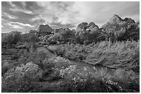 Fremont River Canyon in fall. Capitol Reef National Park, Utah, USA. (black and white)