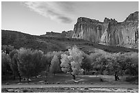 Fruita Campground and cliffs at sunset. Capitol Reef National Park ( black and white)
