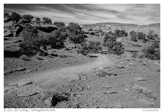 Trail near Sunset Point. Capitol Reef National Park (black and white)