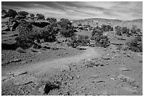 Trail near Sunset Point. Capitol Reef National Park, Utah, USA. (black and white)
