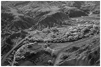 Fruita historic orchards from above in autumn. Capitol Reef National Park, Utah, USA. (black and white)