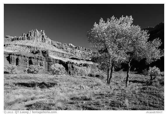 Castle Meadow and Castle in autumn. Capitol Reef National Park (black and white)