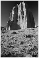 Temple of the Moon, Cathedral Valley, morning. Capitol Reef National Park, Utah, USA. (black and white)