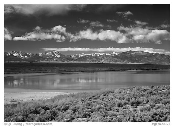 Sagebrush, lake, and Snake Range. Great Basin National Park (black and white)