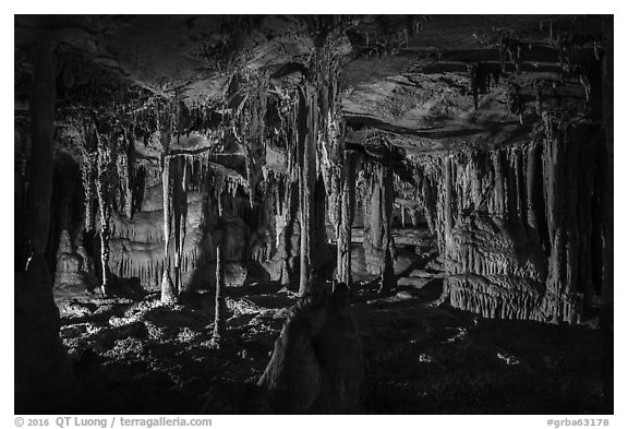The Swamp, Lehman Cave. Great Basin National Park (black and white)