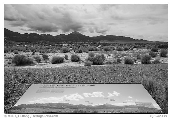 Desert meets mountains interpretive sign. Great Basin National Park (black and white)