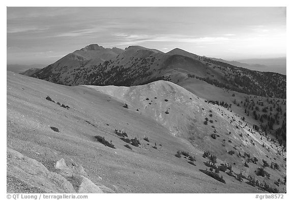 Wheeler Peak and Snake range seen from Mt Washington, dusk. Great Basin National Park (black and white)