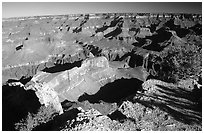 View from Hopi point, morning. Grand Canyon National Park ( black and white)
