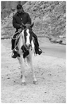 Havasu Indian on horse in Havasu Canyon. Grand Canyon National Park, Arizona, USA. (black and white)