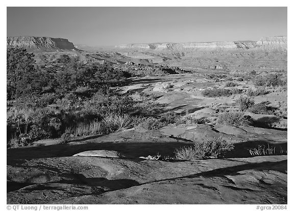 Rock slabs on the Esplanade, early morning. Grand Canyon  National Park (black and white)