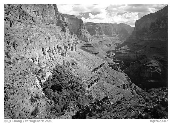 Thunder Spring Oasis at the mounth of Tapeats Creek secondary canyon. Grand Canyon  National Park (black and white)