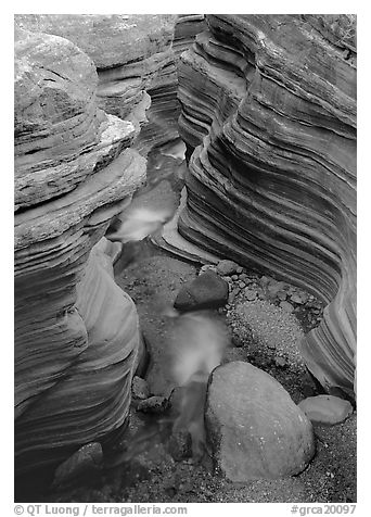 Red sandstone gorge carved by Deer Creek. Grand Canyon National Park (black and white)