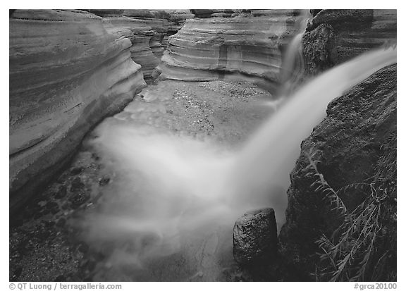 Cascade of Deer Creek. Grand Canyon  National Park (black and white)