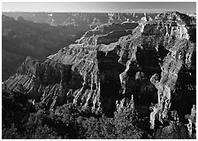 Canyon landscape. Grand Canyon  National Park ( black and white)