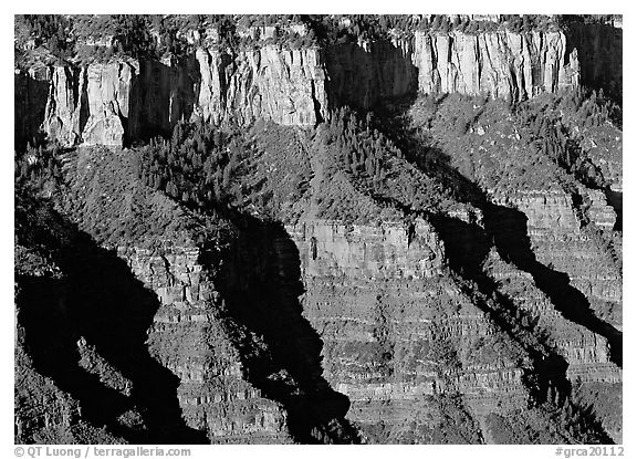 Canyon walls from Bright Angel Point, morning. Grand Canyon  National Park (black and white)