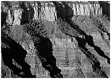 Canyon walls from Bright Angel Point, sunrise. Grand Canyon National Park ( black and white)