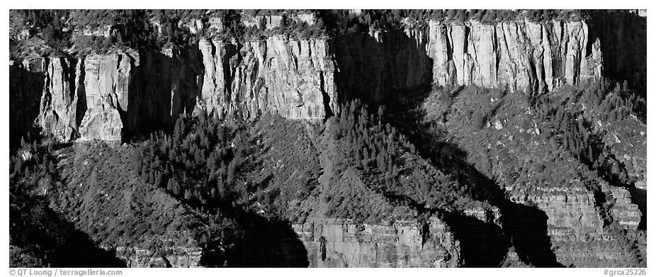 Canyon rim. Grand Canyon National Park (black and white)
