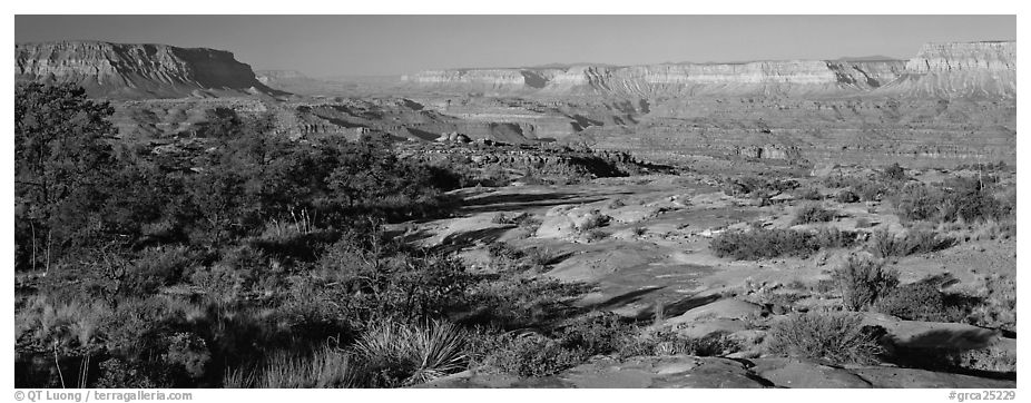 Esplanade Plateau scenery. Grand Canyon National Park (black and white)