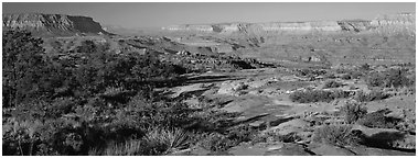 Esplanade Plateau scenery. Grand Canyon National Park (Panoramic black and white)