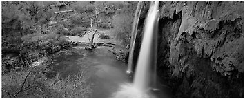 Havasu Fall and turquoise pool. Grand Canyon National Park (Panoramic black and white)