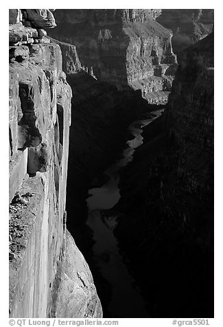 Colorado River and Cliffs at Toroweap, early morning. Grand Canyon National Park (black and white)