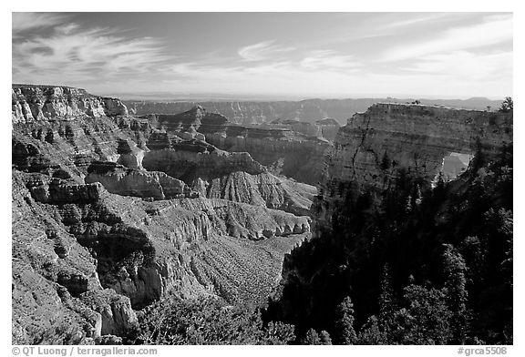 Cliffs and Angel's Arch near Cape Royal, morning. Grand Canyon National Park (black and white)