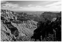 Cliffs and Angel's Arch near Cape Royal, morning. Grand Canyon National Park ( black and white)
