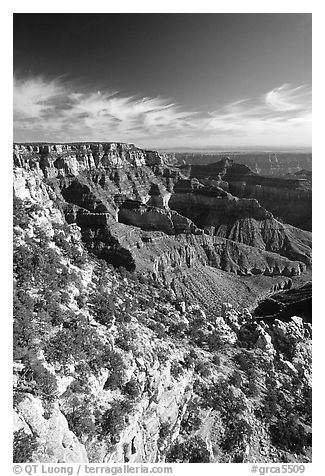 Cliffs near Cape Royal, morning. Grand Canyon National Park (black and white)
