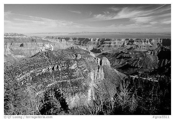 View from Roosevelt Point, morning. Grand Canyon National Park (black and white)