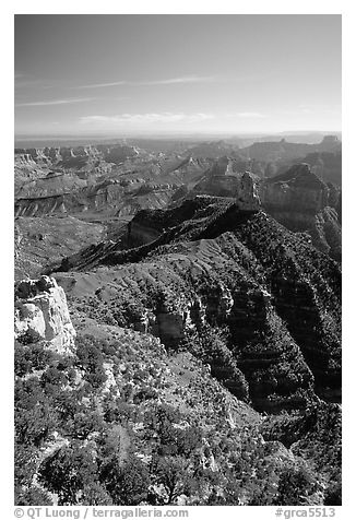 View from Point Imperial, morning. Grand Canyon National Park (black and white)