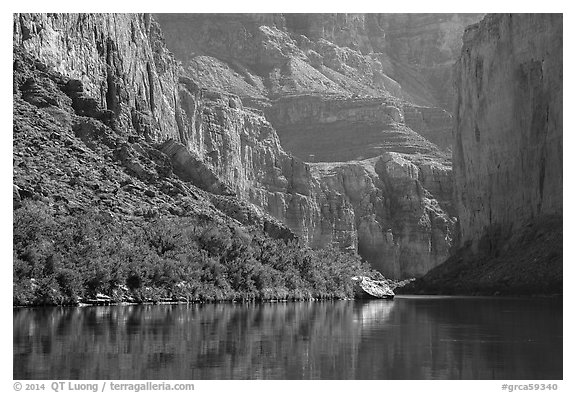 Colorado River and slope with vegetation in the spring, Marble Canyon. Grand Canyon National Park (black and white)