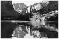 Cliffs and vegetation reflected in Colorado River, morning. Grand Canyon National Park ( black and white)
