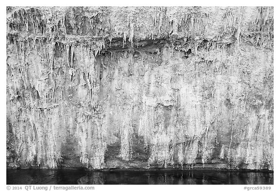 Salt stalagtites on riverside cliff. Grand Canyon National Park (black and white)