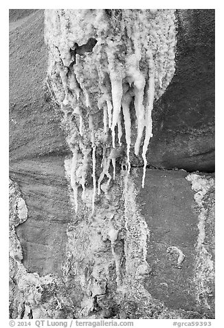 Close-up of salt stalagtites. Grand Canyon National Park (black and white)