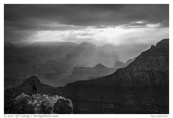 Visitor looking, South Rim near Mather Point. Grand Canyon National Park (black and white)