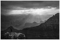 Visitor looking, South Rim near Mather Point. Grand Canyon National Park ( black and white)