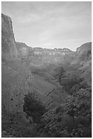 Tapeats Creek, dusk. Grand Canyon National Park ( black and white)