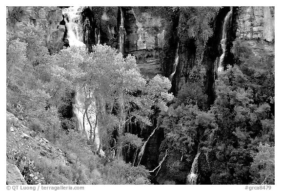 Thunder river lower waterfall, afternoon. Grand Canyon National Park (black and white)
