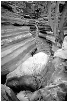 Deer Creek flows into a narrow canyon. Grand Canyon National Park ( black and white)
