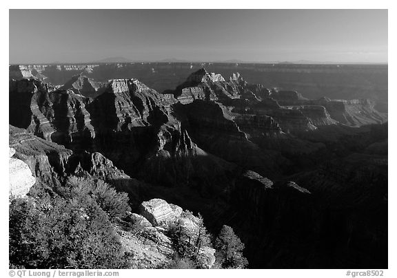 Bright Angel Point, late afternoon. Grand Canyon National Park (black and white)