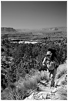 Backpacker on  Esplanade, Thunder River and Deer Creek trail. Grand Canyon National Park, Arizona, USA. (black and white)