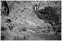 Backpacker above Thunder River Oasis. Grand Canyon National Park, Arizona, USA. (black and white)