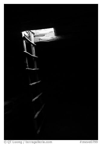Dark kiva room with Ladder through light opening, Spruce Tree house. Mesa Verde National Park (black and white)