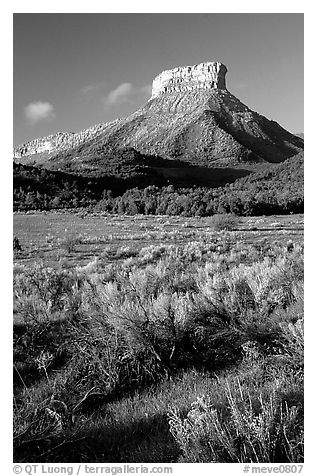 Meadows and mesas near  Park entrance, early morning. Mesa Verde National Park (black and white)