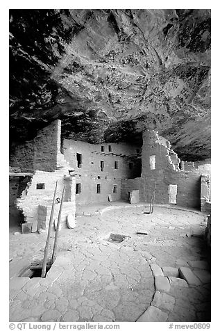 Ladder emerging from Kiva and Spruce Tree house. Mesa Verde National Park (black and white)